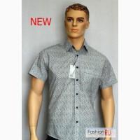 Новые мужские рубашки в Волгограде