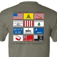Футболка History of Defiance Sage