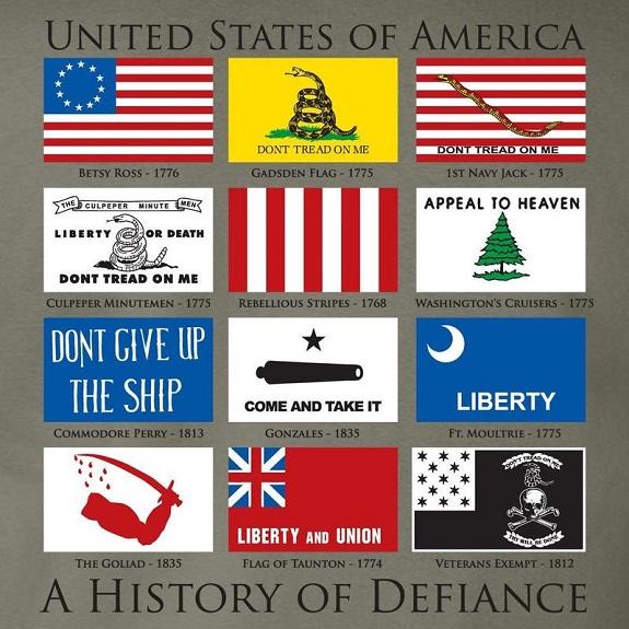 Фото 5. Футболка History of Defiance Sage